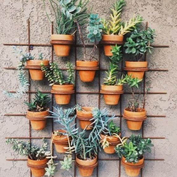 15 Ways To Decorate The Home With Potted Plants